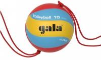 Gala Jump 10 BV 5481 S